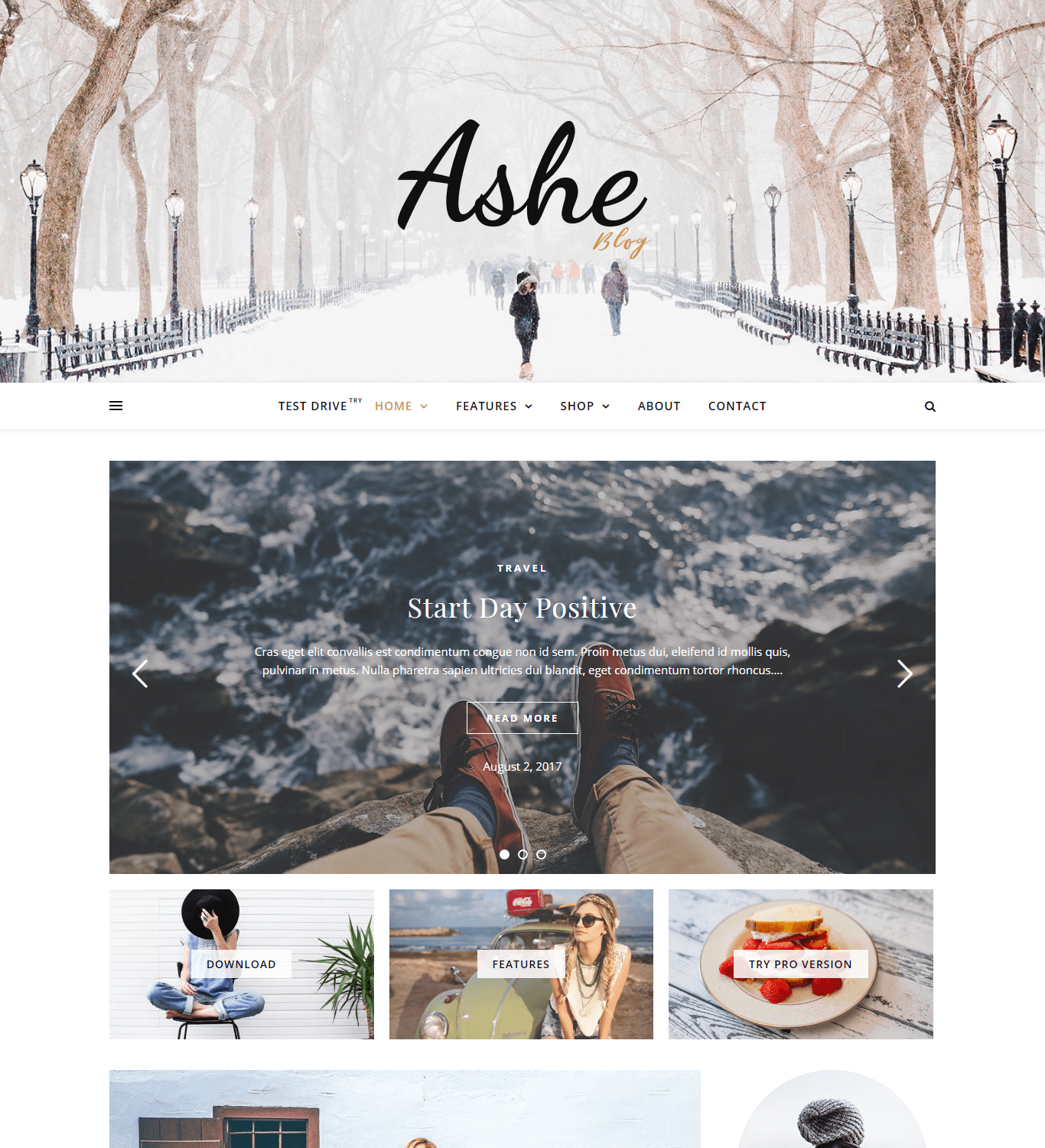 WordPress blog theme ashe