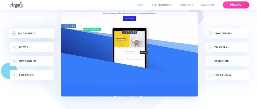 page builders - divi